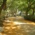 מלון לאונרדו אשקלון – הגן של רן – קיבוץ ניר עוז